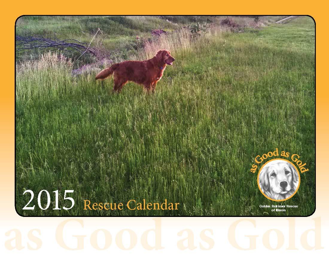 Order Your 2015 Rescue Calendar