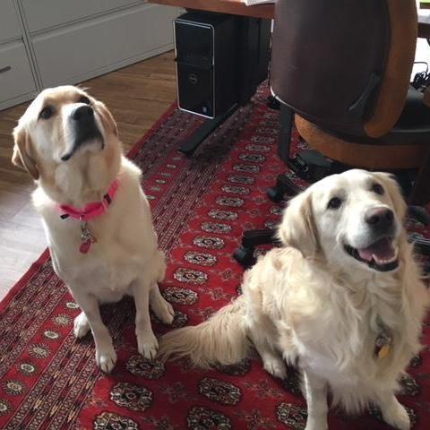 Bella & Leo