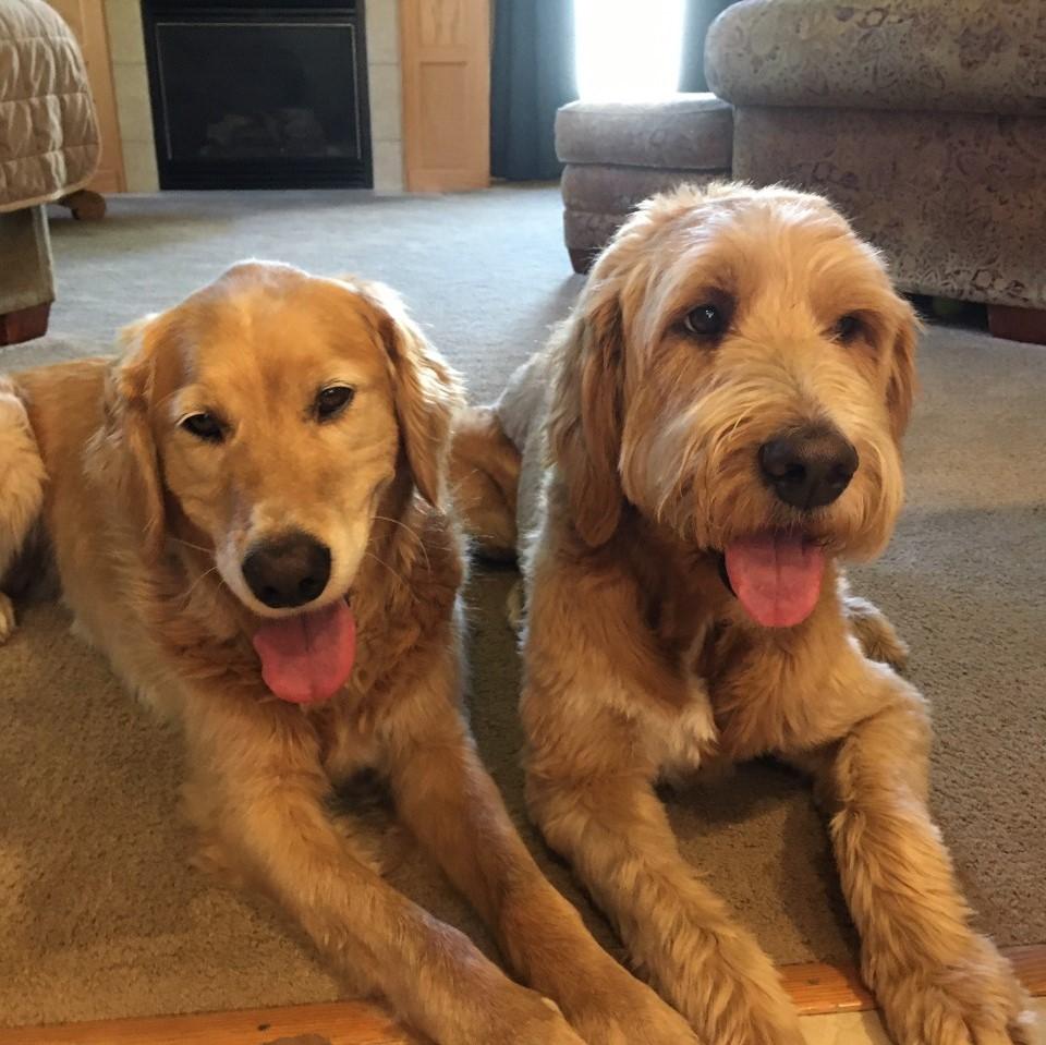Oakley & Kubota – Bonded Pair – Courtesy Posting