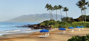 Trip to Maui